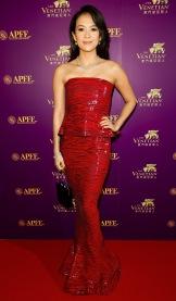 APAC Film Festival 2013