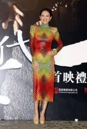 Zhang Ziyi-4
