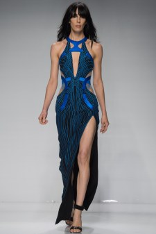 Atelier Versace Spring 2016 Couture Look 14