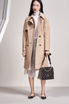 Christian Dior Pre-Fall 2016 Look 3
