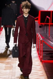 Dior Homme Fall 2016 Look 17
