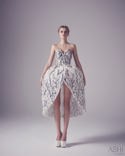 Ashi Studio Spring 2016 Couture Look 17
