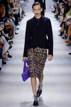 Christian Dior Fall 2016 Look 14