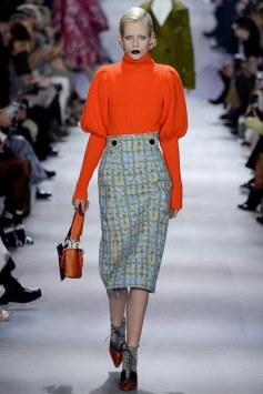Christian Dior Fall 2016 Look 16