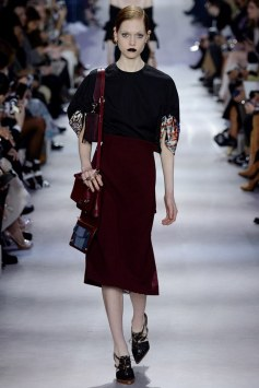 Christian Dior Fall 2016 Look 22