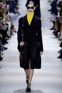 Christian Dior Fall 2016 Look 5