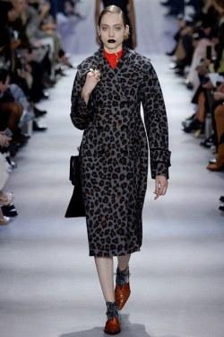 Christian Dior Fall 2016 Look 52