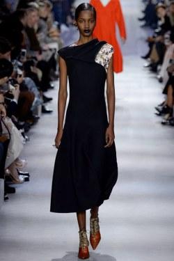 Christian Dior Fall 2016 Look 53