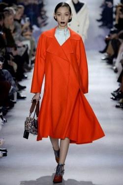 Christian Dior Fall 2016 Look 54