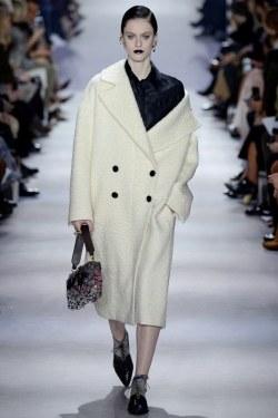 Christian Dior Fall 2016 Look 55