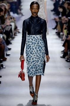 Christian Dior Fall 2016 Look 8