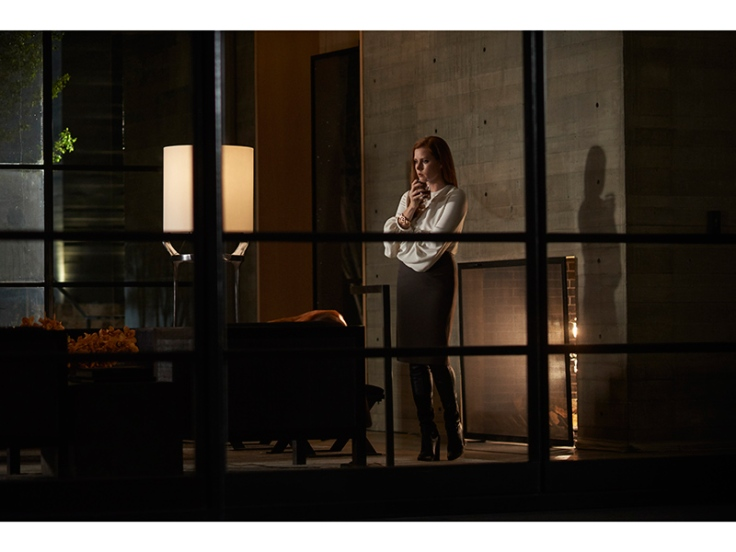 Nocturnal Animals Tom Ford-1