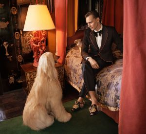 Tom Hiddleston X Gucci Menswear Cruise 2017 Campaign -2016.9.27-
