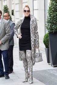 Celine Dion in Balmain-1