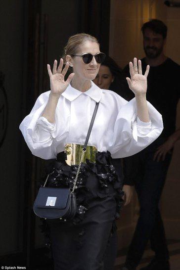 Celine Dion in Mario Dice Fall 2017-3