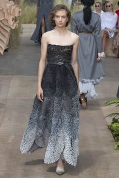 Christian Dior Fall 2017 Couture Look 18