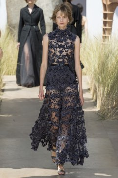 Christian Dior Fall 2017 Couture Look 31