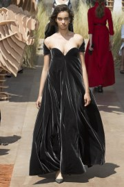 Christian Dior Fall 2017 Couture Look 34