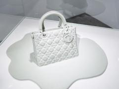 Lady Dior As Seen By-6