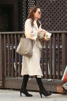 Angelina Jolie in Max Mara-2