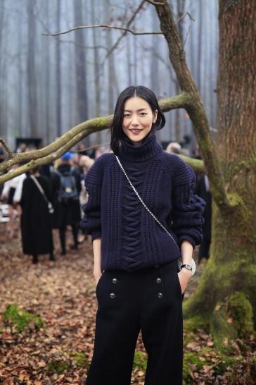 Liu Wen in Chanel Pre-Fall 2018-10