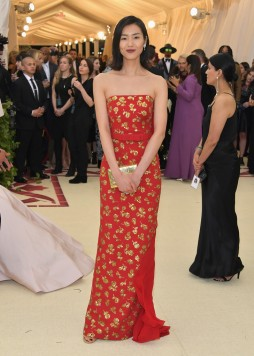 Liu Wen in Michael Kors-3