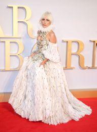 Lady Gaga in Alexander McQueen Fall 2013-2