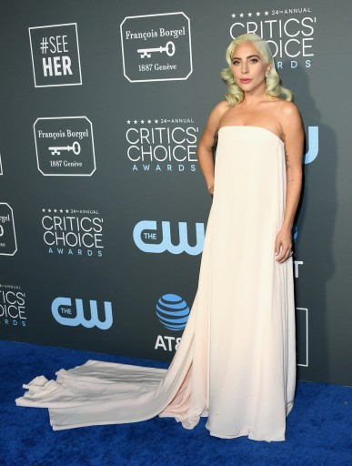 lady gaga in calvin klein by appointment