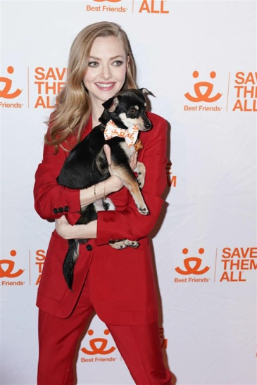 Animal Society Best Friends Benefit to Save Them All