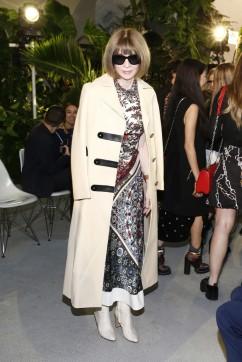 Anna Wintour in Louis Vuitton-1