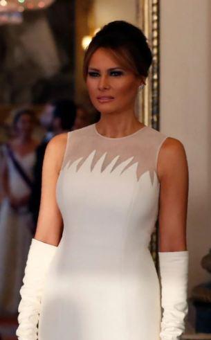 Melania Trump in Dior Spring 2019 Couture-9