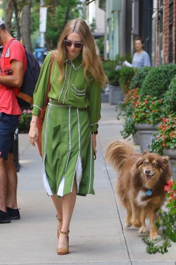 Amanda Seyfried in Burberry Fall 2019-1