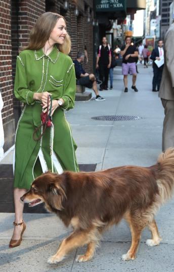 Amanda Seyfried in Burberry Fall 2019-6