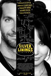 Silver Lingings Playbook